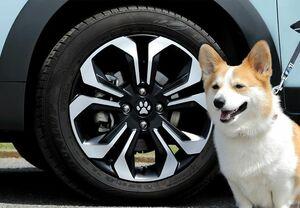 わんダフル!愛犬用カーアクセサリー「Honda Dog」シリーズから肉球モチーフの「ペットセンターキャップ」と「ペットセレクトノブ」が新登場
