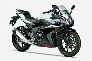 スズキ「GSX250R」「GSX250R ABS」【1分で読める 2021年に新車で購入可能なバイク紹介】