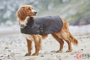 愛犬のコートはマックイーンと同じ生地で ランドローバーの犬用アイテムがお洒落