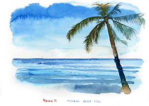 気軽にハワイへ行ける日はいつくるのだろう