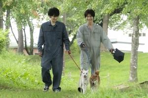 「生きているものは、みんな助ける」実在のサークルの活躍描く感動作『犬部!』