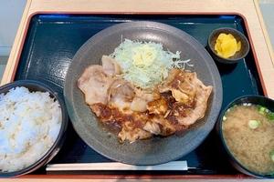 東北自動車道「矢板北PA」で高級豚の生姜焼き定食を!! バイクで行く高速道路グルメ
