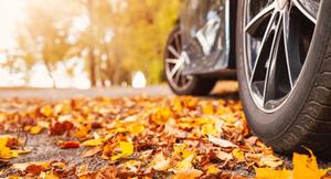 甘く見るな!秋の落ち葉が予想外にクルマに有害な理由とは?