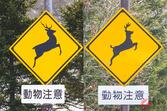 全国の「シカ標識」に新事実!? 角の向きに違和感 知られざる動物標識の謎