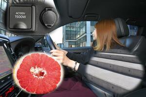 「美」のためには「運転中」も努力! なんとクルマでできるダイエットが存在した