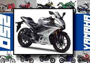 ヤマハ「YZF-R25/ABS」いま日本で買える最新250ccモデルはコレだ!【最新250cc大図鑑 Vol.009】-2020年版-