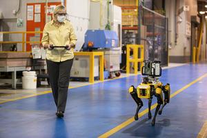 自動車工場にロボット犬が着任! フォードが「スポット」を生産ラインに導入する理由とは【動画】