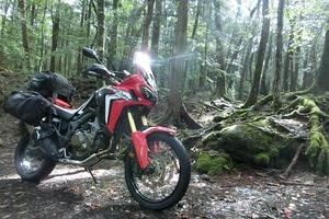 バイクでトレッキング オフロードバイクで行ってみたい林道ツーリング その魅力とは?