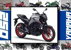ヤマハ「MT-25 ABS」いま日本で買える最新250ccモデルはコレだ!【最新250cc大図鑑 Vol.010】-2020年版-